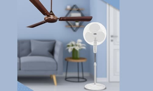 Ceiling Fan Vs Pedestal Fan